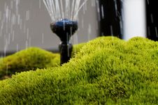 Free Mossy Fountaion Royalty Free Stock Image - 20243936