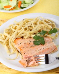 Free Salmon Fish Fillet Stock Images - 20244004