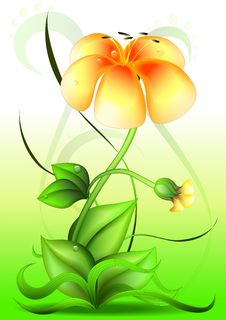 Free Vector Flower Royalty Free Stock Images - 20244319