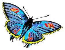 Free Butterfly Colurful Illustration Royalty Free Stock Photography - 20245187