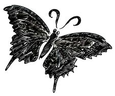 Free Black Butterfly Illustration Stock Image - 20245501