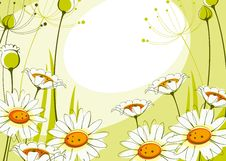 Free Postcard With Daisies 2. Stock Images - 20245844