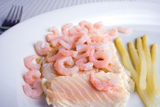 Free Fish And Shrimps Royalty Free Stock Image - 20246046