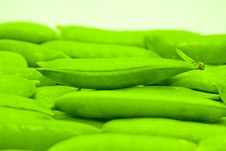 Free Fresh Green Peas Stock Photography - 20247952
