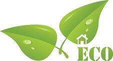 Free Ecological Emblem Royalty Free Stock Image - 20251796