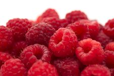 Free Red Raspberries Stock Image - 20252201