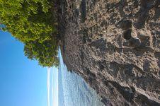 Free Sandy Beach Footprints 12 Royalty Free Stock Photo - 20252565
