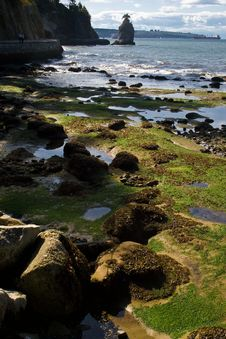 Free Seashore During The Low Tide Royalty Free Stock Image - 20253616