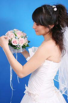 Free Bride Stock Photography - 20253702