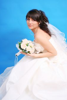 Free Bride Stock Photography - 20253722