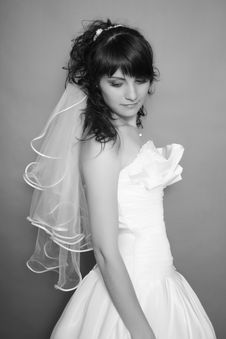 Free Bride Royalty Free Stock Image - 20253746