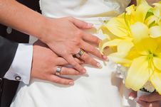 Free Bride And Groom Hands Royalty Free Stock Photos - 20254328
