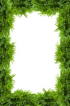 Free Bamboo Frame Stock Photos - 20256563