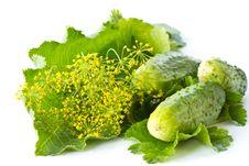Free Cucumbers Royalty Free Stock Photo - 20257975
