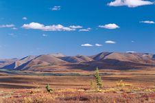 Free Yukon Stock Images - 20258374
