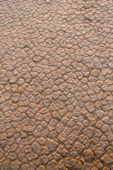 Free Wadi Rum Desert Dry Soil Detail. Stock Photography - 20259252