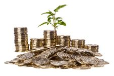 Free Coins And Plant Stock Photography - 20259322