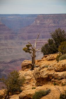Free Grand Canyon Stock Images - 20259654