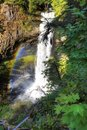 Free Big Creek Falls Stock Photo - 20260270