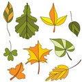 Free Autumn Leaf. Set Stock Image - 20260491