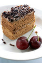 Free Chocolate Cake Stock Images - 20262594