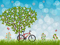 Free Summer Landscape With A Bike Royalty Free Stock Image - 20267426