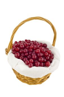 Free Red Currants In Basket Royalty Free Stock Photo - 20260545