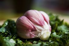 Free Fresh Garlic Royalty Free Stock Photos - 20260678