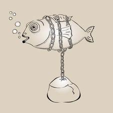 Free Fish Royalty Free Stock Photos - 20261068
