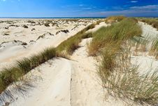Free Sand Dunes With Helmet Grass Royalty Free Stock Images - 20261579