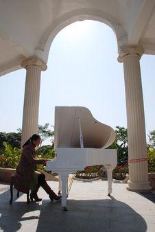 Free A Woman Playing Piano Stock Photo - 20262570