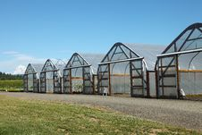 Free Greenhouses In Rural Oregon. Royalty Free Stock Photo - 20263615