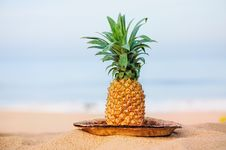 Free Pineapple Stock Photography - 20264552