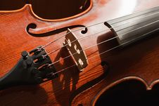 Free Classic Violine Royalty Free Stock Photography - 20265077