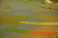 Coloured Fields Royalty Free Stock Photography