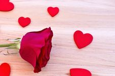 Free Red Rose Stock Photo - 20269390