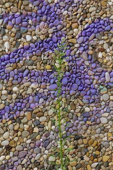 Free Stone Wall Graffiti Stock Photography - 20269902