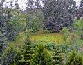 Free Rainy Drops On Window Stock Photo - 20270230