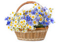 Free Beautiful Flowers In A Basket Royalty Free Stock Photography - 20278057