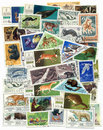 Free A Set Of Stamps: Animals Stock Photography - 20278402