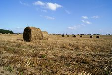 Free Stubble With Straw Stock Photo - 20271700