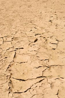 Free Cracked Earth Texture Background Stock Photo - 20273510