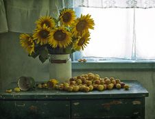 Free Bouquet Of Sunflowers And Apricots Stock Photo - 20274690