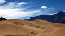 Free Desertification Royalty Free Stock Photos - 20275418