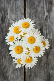 Free Bouquet Of Daisies Stock Image - 20275911