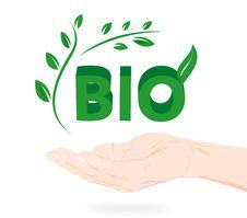 Free Green Bio Logo In Hand Royalty Free Stock Photo - 20275925