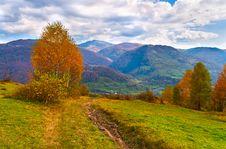 Free Colorful Autumn Landscape Stock Photo - 20277490