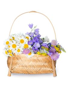 Free Beautiful Flowers In A Basket Royalty Free Stock Images - 20277989