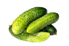 Free Young Cucumbers Stock Images - 20278634