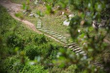 Free Trail With Wooden Steps Across The Meadow Royalty Free Stock Photos - 20279508